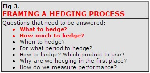 Framing a Hedging Process